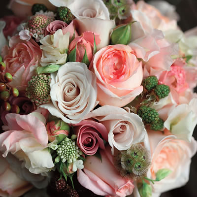 Cours Floral, L'Établisienne