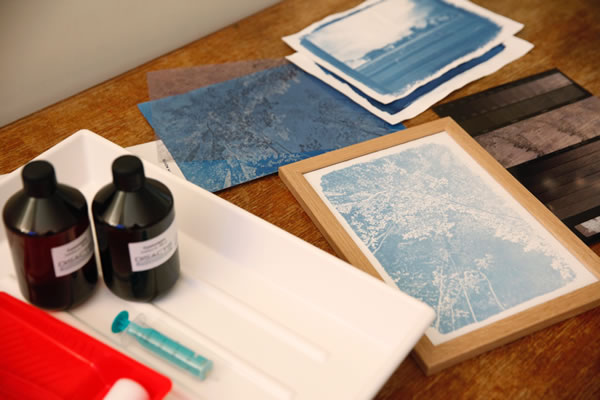Atelier initiation au Cyanotype
